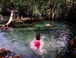 tour yucatan by bus easy mexico, celestum vista cenotes